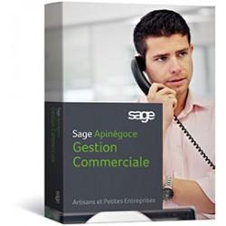 Option Articles achats gestion i7 apinégoce